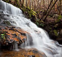 Falls on Betts Vale Track, Mount Wellington #2 by Chris Cobern