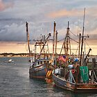 Provincetown Trawlers by bettywiley