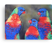 Colourful Chatter {Australian Lorikeets} Canvas Print