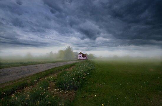 Pink Cottage by Nigel Bangert