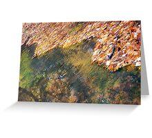 Monet's Mirror Greeting Card