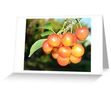 Cherry Tree-Detail Greeting Card
