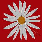 WHITE DAISY RED by RoseLangford