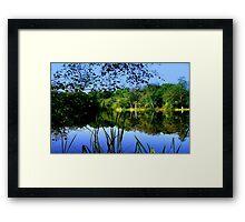 Nature's Beauty © Framed Print