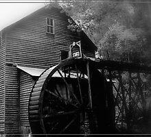 Bush Mill 1896 by lynell
