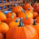 Pumpkins for Sale by Sarah Beard Buckley