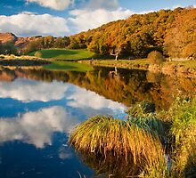 Autumn on the river Brathay by Shaun Whiteman