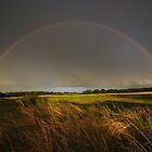 Double Rainbow on Harlow Common by Nigel Bangert