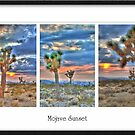 Mojave Sunset Triptych by Kenton Elliott