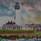 Pigeon Point Light House by Sally Sargent