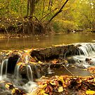 Falling Stream by Gregory Ballos | gregoryballosphoto.com
