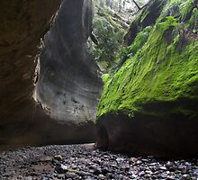 Carnarvon Gorge QLD by Alexander Pawlow