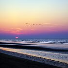 sunrise at Hilton Head, SC by Dannyboy2247