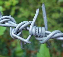 Barb Wire by rualexa