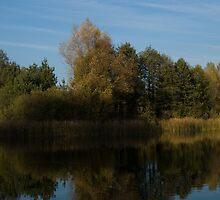 Autumn Landscape by Krisek