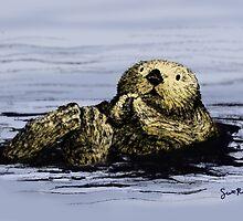 Sea Otter Floating by SRolfe