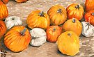 Pumpkins III by Amy-Elyse Neer