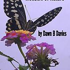 Wonders of Nature by Dawn B Davies-McIninch