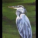"""""""Heron. (At Jungle Gardens- Sarasota, Florida) by amyglasscockart"""