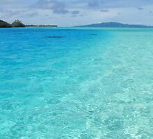 South Pacific Paradise  by Kim Roper