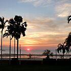 Darwin sunset by SUBI
