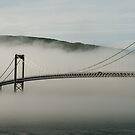 Bridge by ilpo laurila