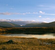 Corrour Marsh by Andy Taylor