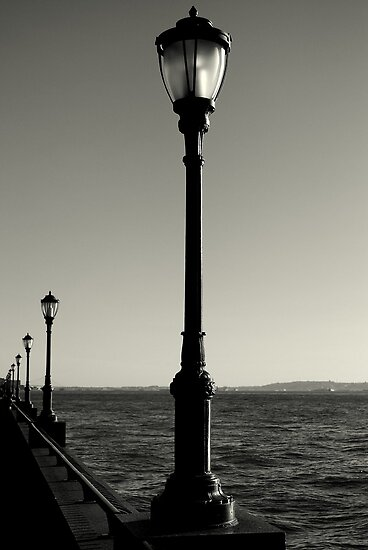 Lamp Posts by Paul Finnegan