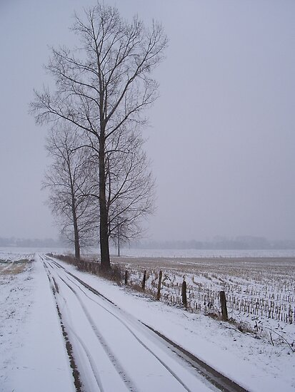 Snowroad by Sanne Thijs