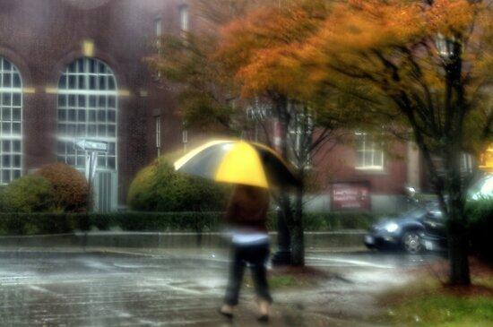 Walking in the Rain by Monica M. Scanlan
