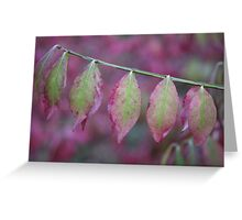 Natural Colours Greeting Card