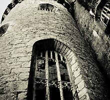 Medieval Castle by Selina Ryles