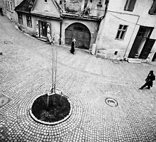 OnePhotoPerDay Series: 300 by C. by C. & L. | ABBILDUNG.ro Photography