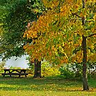 Fall at Baltz Lake by Susan Blevins