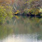 Fall reflections on the War Eagle River,N.W. Arkansas by David  Hughes