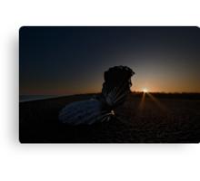 Scallop Sunset Canvas Print