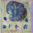 Pansy Collage by Caren Grant