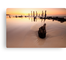 Pt Willy Canvas Print