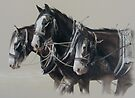 The Workhorse. by Heidi Schwandt Garner