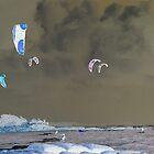 Maroochydore Kites - inverted by Stecar