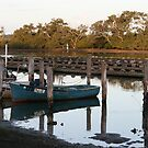 Fishing Boats & Oyster Leases at Tuncurry by aussiebushstick