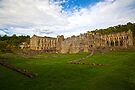 Rieveaulx Abbey 5 by Ray Clarke