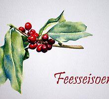 Feeseisoen by Debbie Schiff