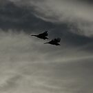 Ravens in Flight (No 2) by Tomasz Ciolek