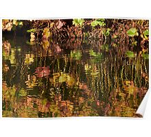Lakeside reflections...Sandringham Park Poster