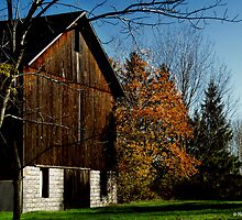 Brown Barn by Marcia Rubin