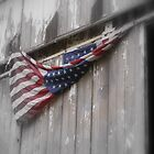 unfaded glory on an Ohio barn by Roxygirl