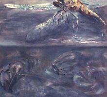 Dragonfly Illusion by Cheryl White
