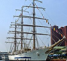 Tall Ship by starlite811