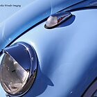 Blue Bug Eye by starlitewonder